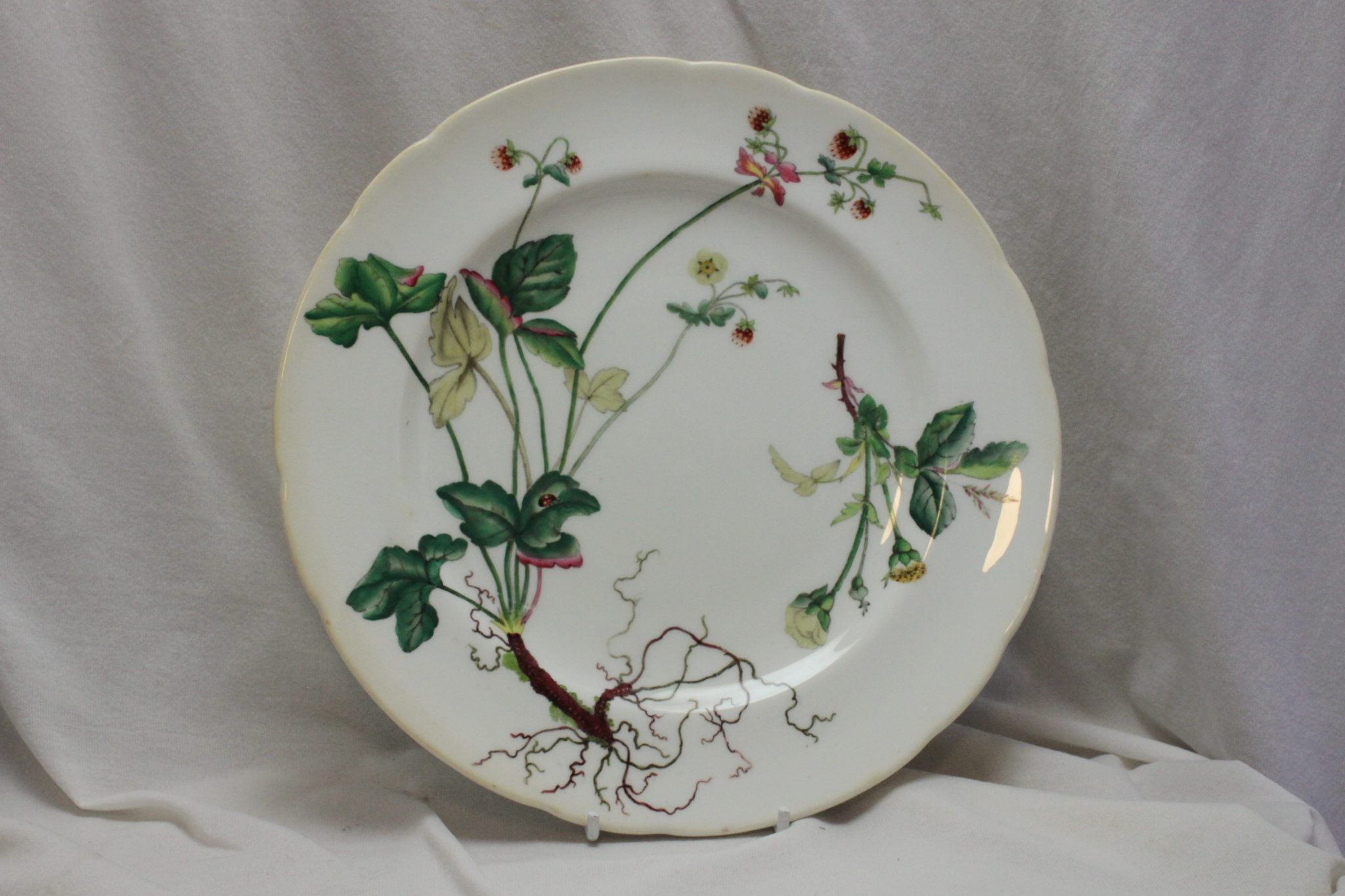 Minton hand coloured plate pattern B224