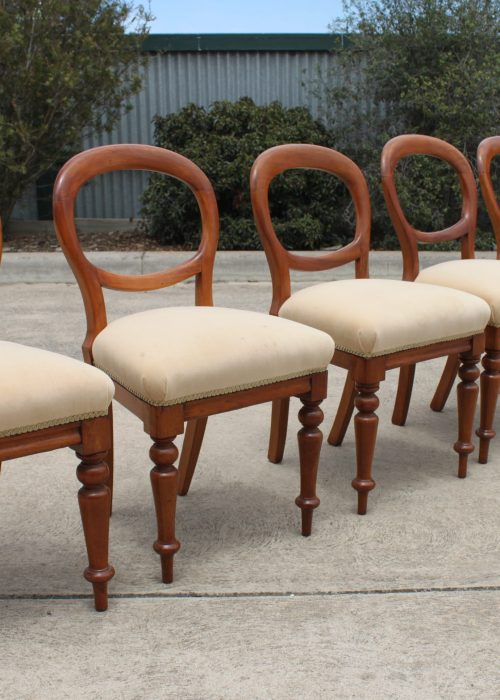 Set of 6 cedar balloon back dining chairs