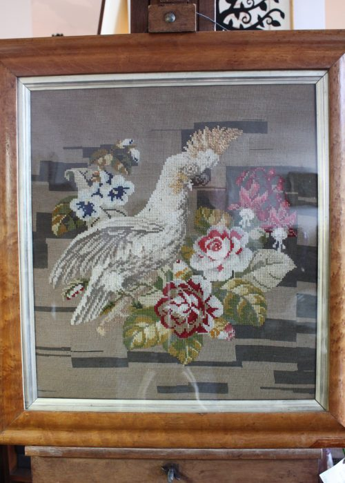 Woolwork of sulphur crested Cockatoo